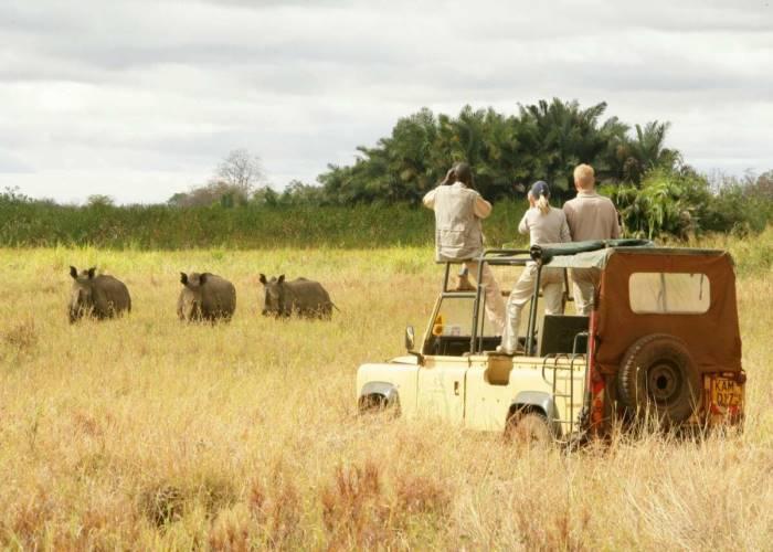 Agenzie Safari